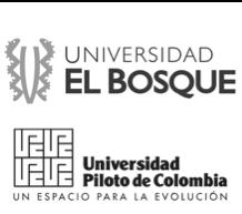 EL BOSQUE_PILOTO